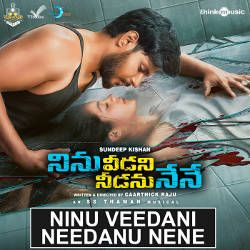 Ninu Veedani Needanu Nene songs