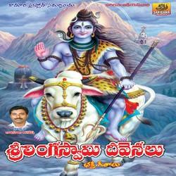 Linga Swamy Devanallu songs