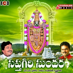 Listen to Om Namo Narayanayanaya songs from Saptagiri Sundara