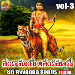 Listen to Sharanu Sharanu songs from Nandamaye Anandamaye - Sri Ayyappa Patalu (Vol 3)