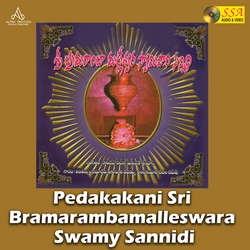 Pedakakani Sri Bramarambamalleswara Swamy Sannidi songs