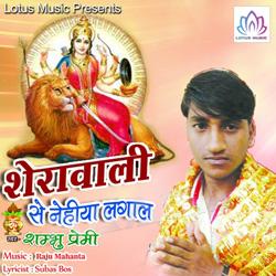Listen to Jab Maihar Jaibu A Bhauji songs from Sherawali Se Nehiya Lagal