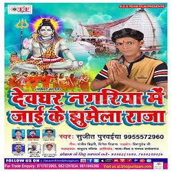 Listen to Saavan Ke Pahila Somari Ke songs from Devghar Nagariya Me Jaai Ke Jhumela Raja