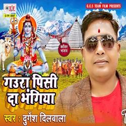 Gaura Pisi Da Bhangiya songs