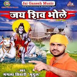 Jai Shiv Bhole songs
