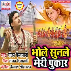 Bhole Sunle Meri Pukar songs