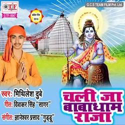 Chali Ja Babadham Raja songs