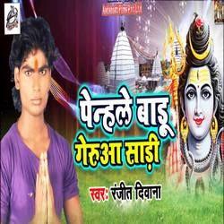 Penhale Badu Gerua Sadi songs