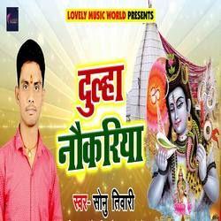 Dulha Naukariya songs