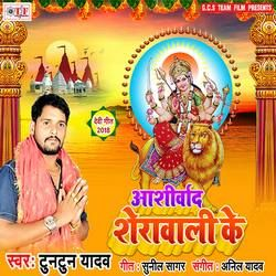 Listen to Pathhare Ke Mandir Mai Ho songs from Aashirwad Sherawali Ke