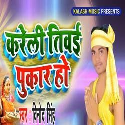 Kareli Tiwai Pukar Ho songs