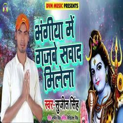 Bhangia Me Gjbe Swad Milela songs