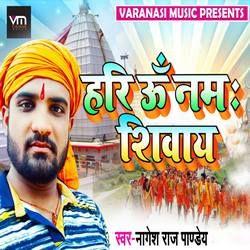 Hari Om Namah Shivay songs
