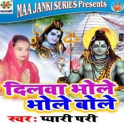 Dilwa Bhole Bhole Bole songs