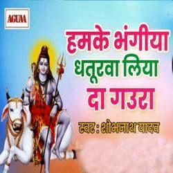 Hamke Bhangiya Dhaturwa Liyada Gaura songs
