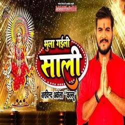 Bhula Gaili Saali songs
