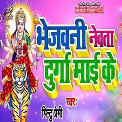 Bhejwani Newta Durga Maai Ke songs