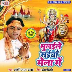Bhulaile Saiya Mela Me songs