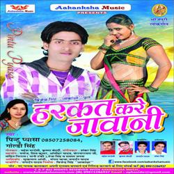 Listen to Dal Ke Chabhi Failawle Bawe Navi songs from Harkat Kare Jawani