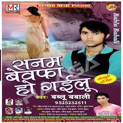 Sanam Bewafa Ho Gailu songs