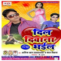 Dil Diwana Bhail songs