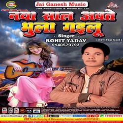 Naya Saal Awate Bhula Gailu songs