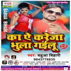 Ka A Kareja Bhula Gailu songs