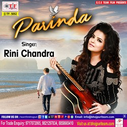 Parinda songs