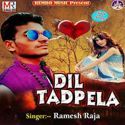 Dil Tadpela songs