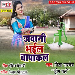 Jawani Bhail Chapakal songs