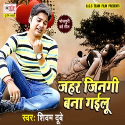 Jahar Jinagi Bana Gailu songs