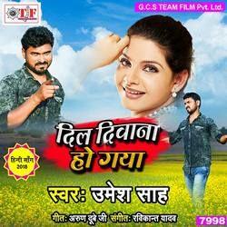 Dil Deewana Ho Gaya songs