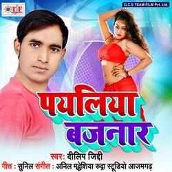 Listen to Paniya Bhare Na Jaib songs from Payaliya Bajnar