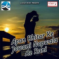 Apan Bhitar Ke Jawani Napwala Ae Rani songs