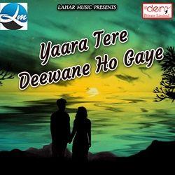 Yaara Tere Deewane Ho Gaye songs