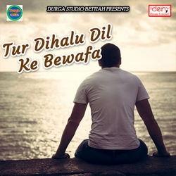Tur Dihalu Dil Ke Bewafa songs