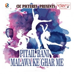Listen to Swagat Abhinandan Ka songs from Pitail Bani Malawa Ke Ghar Me