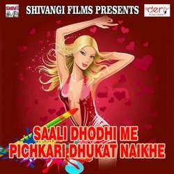 Saali Dhodhi Me Pichkari Dhukat Naikhe songs