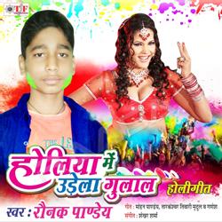 Listen to Kaise Dale Rang songs from Holiya Me Urela Gulal