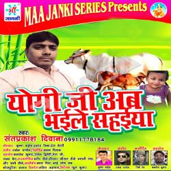 Yogi Ji Ab Bhaile Sahaiya songs
