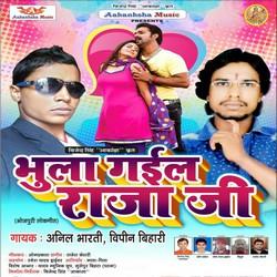 Bhula Gaila Raja Ji songs