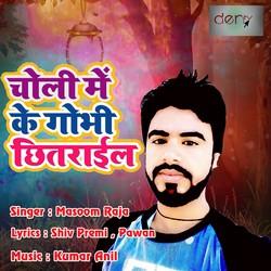 Choli Me Ke Gobhi Chhitarail songs