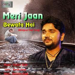 Meri Jaan Bewafa Hai songs