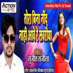 Listen to Tora Bina Neend Nahi Aave Re Sawariya songs from Tora Bina Neend Nahi Aave Re Sawariya