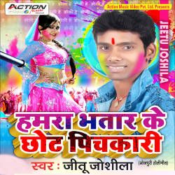 Humra Bhatar Ke Chhot Pichkari songs