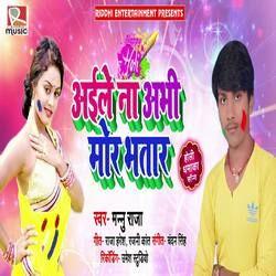Aaile Na Abhi Mor Bhatar songs