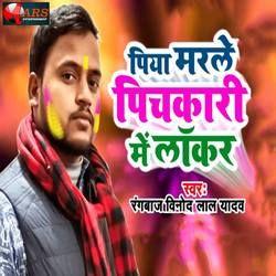 Piya Marle Pichkari Me Locker songs