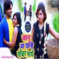 Janu Ja Tani Gobar Pathe songs