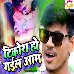 Tikora Ho Gail Aam songs