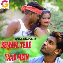 Bewafa Tere Yaad Mein songs